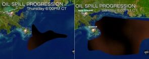 Gulf of Mexico Oil Spill Projection