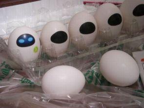 Eve Eggs