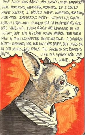 romantic dog story