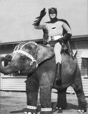 batman on an elephant