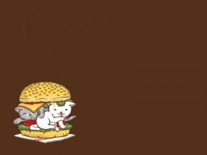kitten sandwich