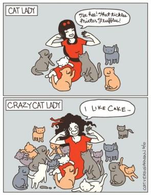 cat lady vs crazy cat lady