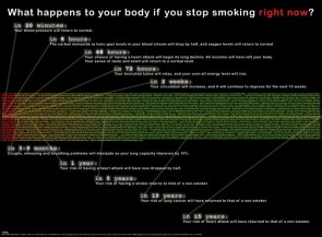 what happens to your body if you stop smoking righ tnow