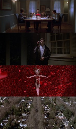 american beauty stills