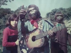 asian monkeys