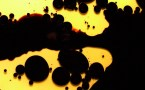 black and yellow splatter wallpaper
