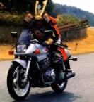 samuri biker