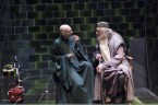 voldemort and dumbledore