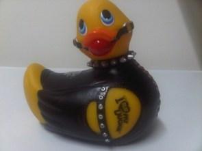 S-M Duck