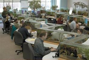 Work Space Aquarium