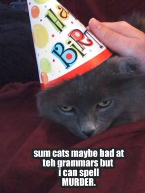 murdercat