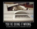 no matter how hard you try, it is impossible to fax a cat