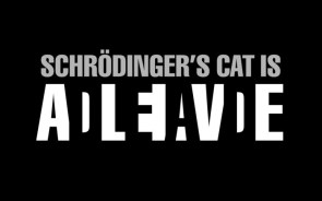 schodingers cat