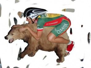 bear rider