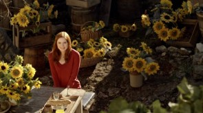 sunflower redhead