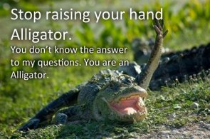 alligator hand