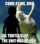 come at me bro, I'll turtle slap the shit ouf of you