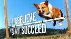 if you believe you will succeed