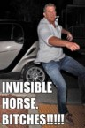 invisible horse, bitches