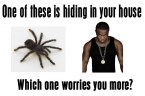 one of these is hiding in your house