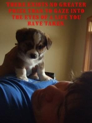 puppy killer