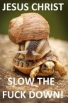 slow the fuck down