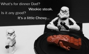 wookie steak
