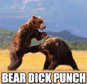 bear dick punch