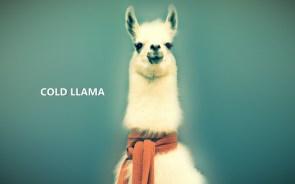 cold llama