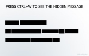 press ctrl W to see the hidden message
