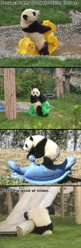 pandas are good at many things