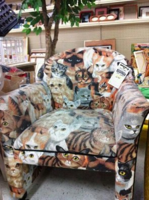 kitty chair
