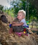 baby and cat in swing