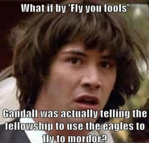 what if by fly you fools