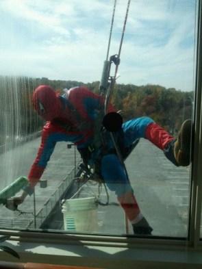 spider-mans day job