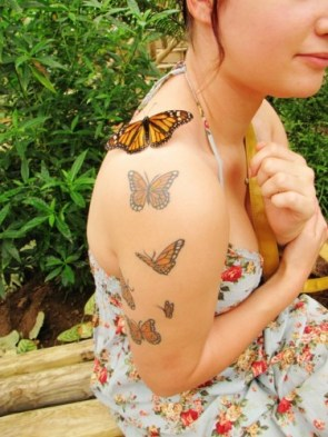 butterfly tattoos with real butter fly
