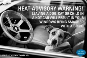 head advisory warning