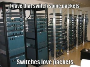 switches love packets