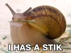 i has a stik