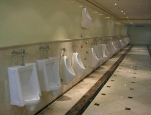 expert mode urinal