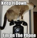 keep it down, Im on the phone