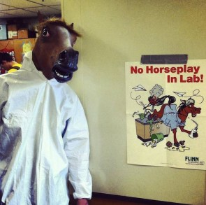 no horseplay in lab