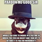pardon me good sir – dog pastime