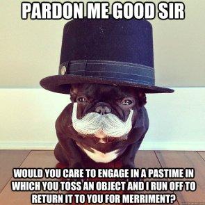 pardon me good sir – dog pastime