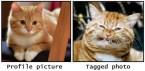profile vs tagged photo
