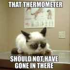 that thermometer should not have gone there