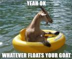 yeah ok, whatever floats your goat