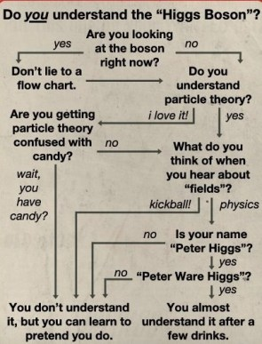 do you understand the higgs boson