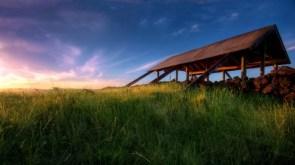 green field shelter