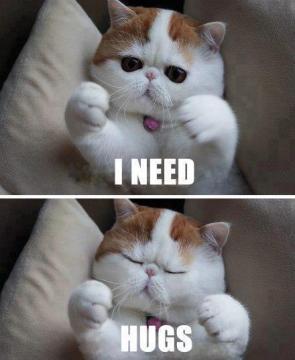 i neeed hugs